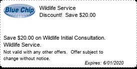 Coupon Wildlife Service Discount!  Save $25.00