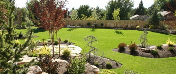 Lawn Care 20/20 Landscaping and Tree Service